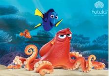 Fototapeta na flizelinie Gdzie jest Nemo - Ośmiornica (3591VE)