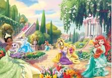 Fototapeta na flizelinie  Princess - Księżniczki i zwierzątka (288VE)