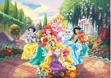 Fototapeta na flizelinie  Princess - Księżniczki na łonie natury (2492VE)