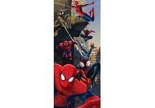 Fototapeta samoprzylepna na drzwi Spiderman - Przygoda (1275SKT) 91x211 cm