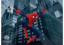 Fototapeta na flizelinie Spiderman - Bohater miasta (269VE)