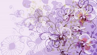 fototapeta fioletowe kwiatki wf378 fototapety do