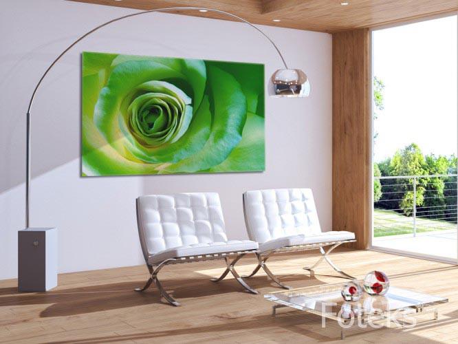 Obraz na płótnie zielona róża